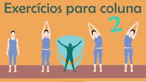 exercicios coluna